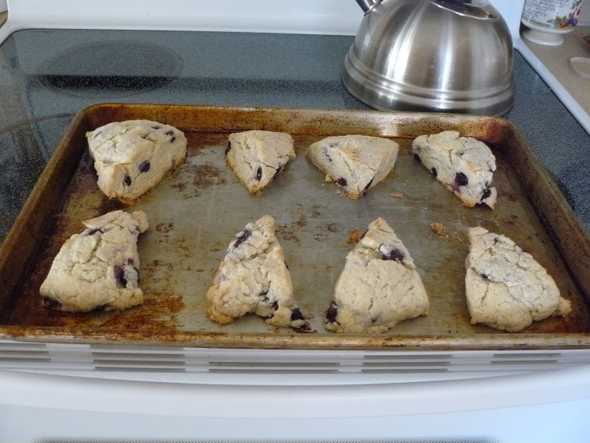 Picture of Blueberry scones
